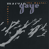 The Master 1961-1984 by Marvin Gaye
