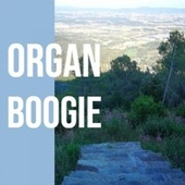 Organ Boogie by Various Artists
