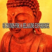 65 Sounds for a Relaxing Experience de Japanese Relaxation and Meditation (1)