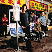 Breach de The Wallflowers