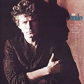 Building The Perfect Beast de Don Henley