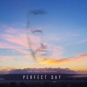 Perfect Day by Assaf Kacholi