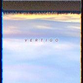 Vertigo de Everything and Everybody