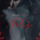 Se Der Pra Ser Feliz by Nga