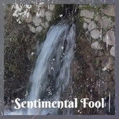 Sentimental Fool by Various Artists