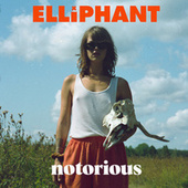 Notorious by Elliphant