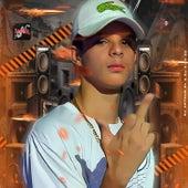 No Baile da H.O (feat. MC Portella, DJ Caio ZO & Mc Larissa) by DJ Arthur ZL