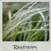 Raindrops by Various Artists