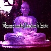 56 Experience Tranquility Calming Sound for Meditation de Zen Meditate