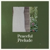 Peaceful Prelude by Various Artists