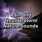 Rain and Thunderstorm Nature Sounds by Relaxing Sounds of Nature