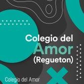 Colegio del Amor (Regueton) von Various Artists