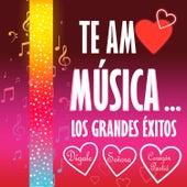 Te Amo Música by Klave