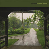 The Shadow I Remember by Cloud Nothings