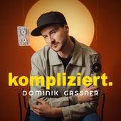 Kompliziert by Dominik Gassner