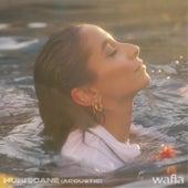 Hurricane (Acoustic) by Wafia