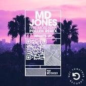 What's Up (feat. Moss Kena) (Pollen Remix) de MD Jones