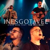 Inesgotável by Higor Rosa
