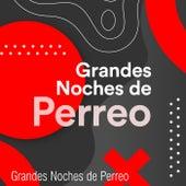 Grandes Noches de Perreo de Various Artists