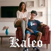 Lovebad de KALEO