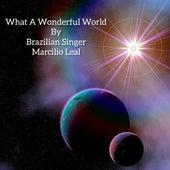 What a Wonderful World de Marcilio Leal
