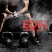 EDM Workout Routine de Various Artists