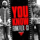 You Know by CJ Funkmaster Flex