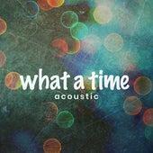 What a Time (Acoustic) de Matt Johnson