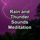 Rain and Thunder Sounds Meditation by Sounds Of Nature