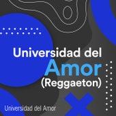 Universidad del Amor (Reggaeton) by Various Artists