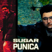 Punica by Sugar