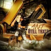 Still Taxes de Ant (comedy)