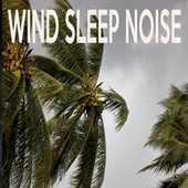 Wind Sleep Noise by Color Noise Therapy