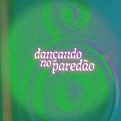 Dançando no Paredão de Various Artists