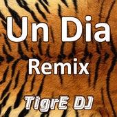 Un Dia (Remix) von TigrE DJ