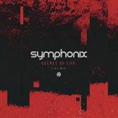 Secret of Life (Live Mix) by Symphonix