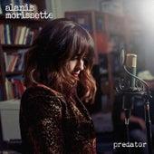 Predator de Alanis Morissette