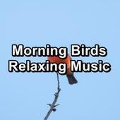 Morning Birds Relaxing Music by Bird Sounds