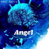 Angel de Paul Barry