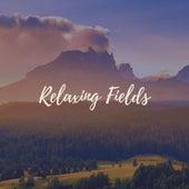 Relaxing Fields by Deep Sleep Meditation