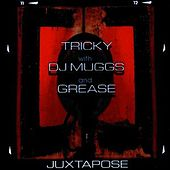 Juxtapose by Tricky