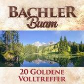 20 goldene Volltreffer by Bachler Buam