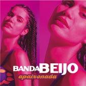 Apaixonada by Banda Beijo