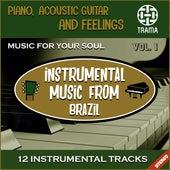 Instrumental Music from Brazil de Various Artists
