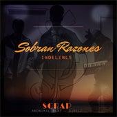 Sobran Razones von scrap & anonimal beats (Remixer)