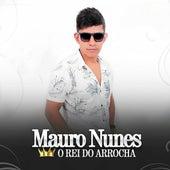 O Rei do Arrocha de Mauro Nunes