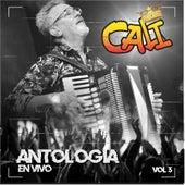 Antología, Vol. 3 (En VIvo) de Grupo Cali