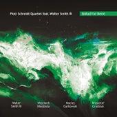 Ballad for Bernt by Piotr Schmidt Quartet