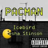 Pacman by Icebird