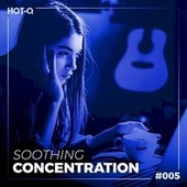Soothing Concentration 005 by Various Artists